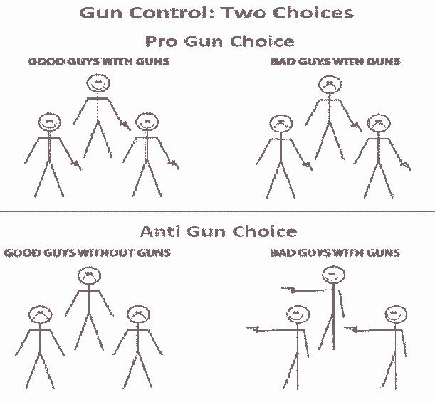 Gun Control Choices